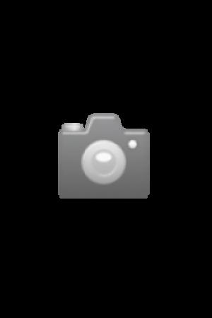 Vixen Teleskop AP-A81M-SM